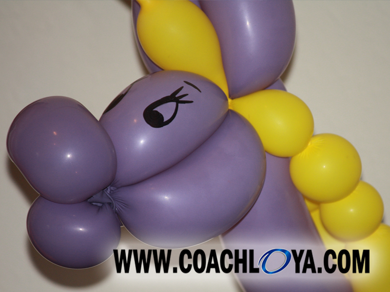 Amy the Balloon Lady